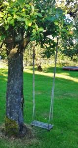 swing-407428
